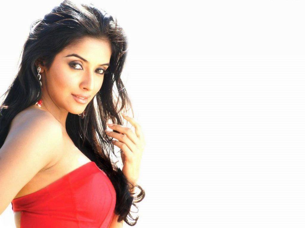 Indian Actress Asin Wallpapers