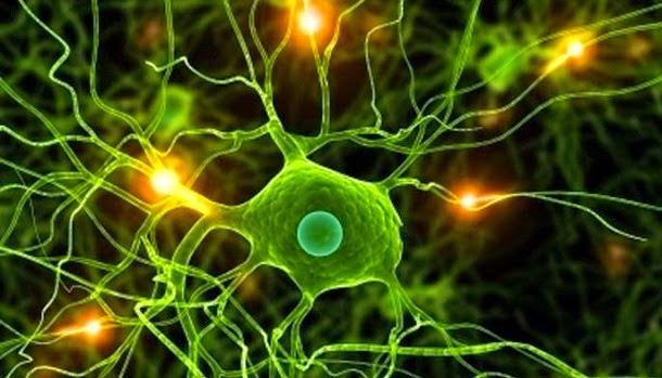 Cientistas descobriram fármaco promissor para curar Alzheimer