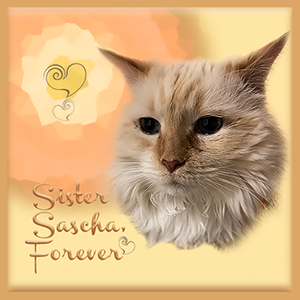 Sister Sascha Forever