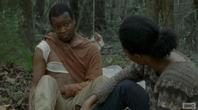 The Walking Dead - Capitulo 13 - Temporada 4 - Español Latino - 4x13