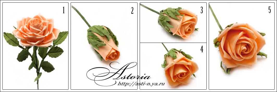 Розы из бумаги своими руками мастер класс для начинающих