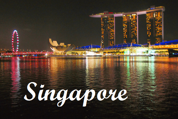we would like to wish you a wonderful 2013 singapore