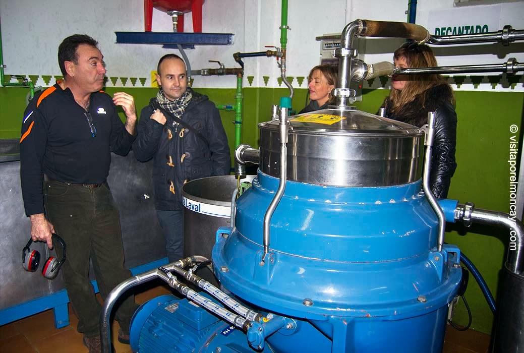 aceituna oliva aceite oliambel almazara acteite sierra del Moncayo