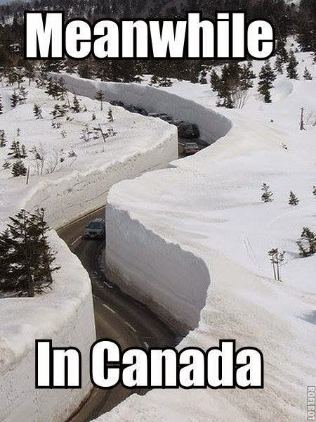 MEANWHILE IN CANADA ...