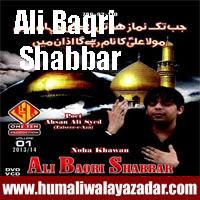 http://ishqehaider.blogspot.com/2013/11/ali-baqri-shabbar-nohay-2014.html