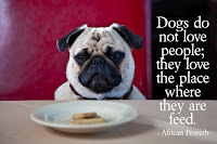 Dogs do not love people; they love the place where they are feed.