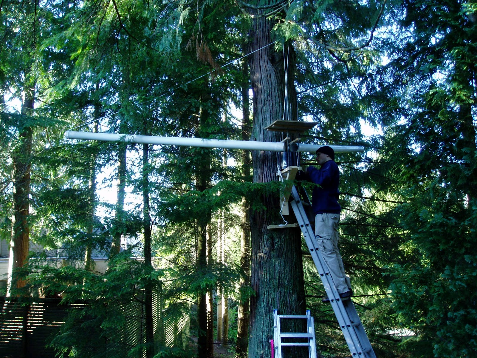 District of North Vancouver Partnered with University of British Columbia to Quantify Benefits of Tree Canopy Interception & Partnership for Water Sustainability in BC: District of North ...
