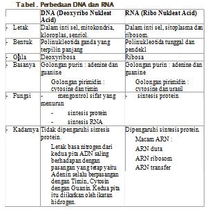 fungsi krim kortikosteroid