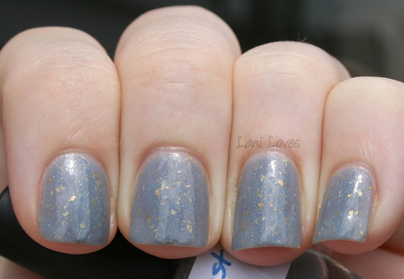 Star Kin Nest Swatch