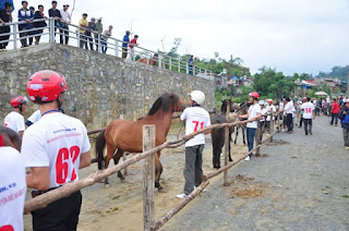 Unique horse racing in Bac Ha  1