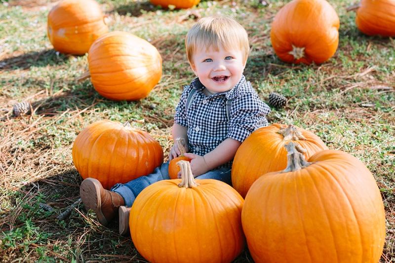 florida pumpkin patch photo shoot