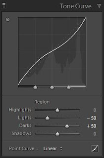 Tone Curve in Tool Lightroom