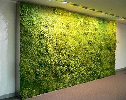 Jardines verticales monterrey jardines verticales en for Verde vertical jardines verticales