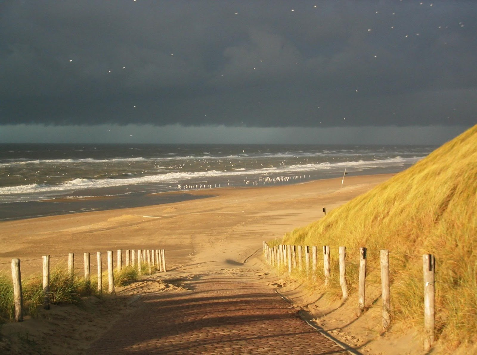 Seaside Katwijk