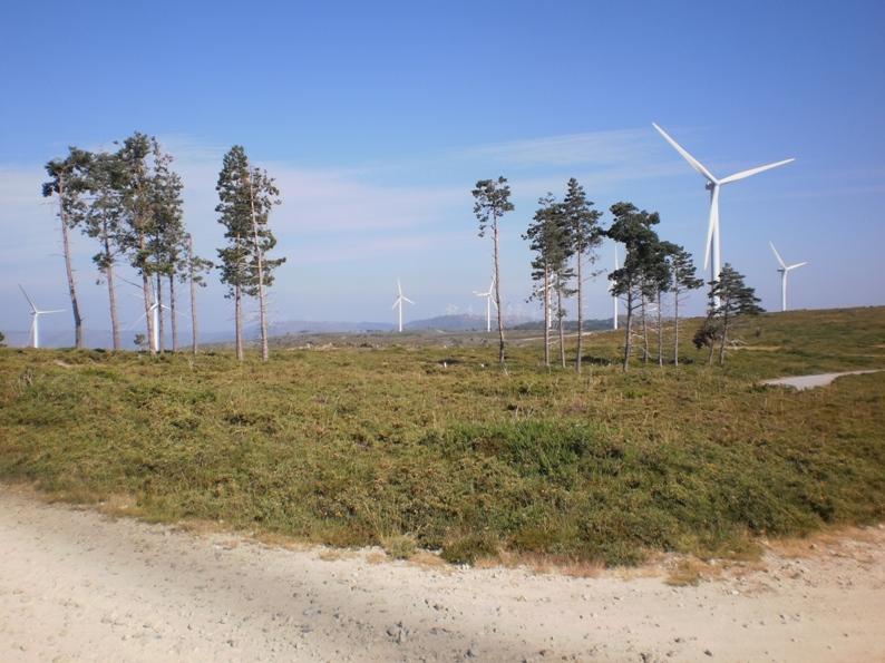 Parque eólico da serra da Freita
