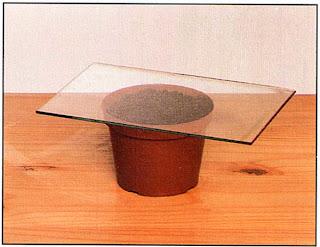 Поместите горшок в теплицу или накройте его стеклом