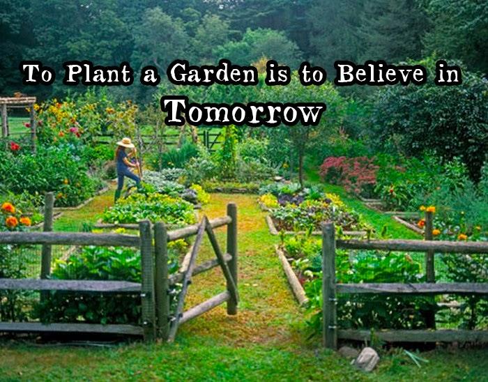 Garden And Farms Plant A Garden
