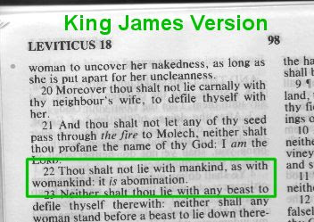 Is homosexuality in the bible foto 78