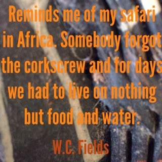 Africa travel quote