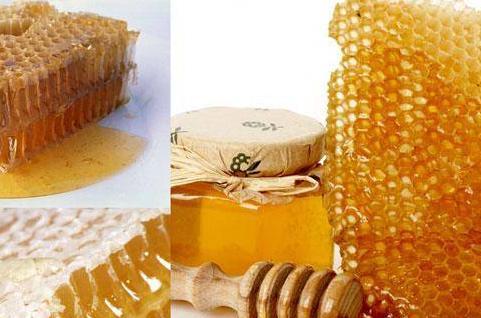 Лечение мёдом - много полезной информации