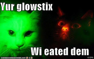 Photo of reasearch cats that glow in black light