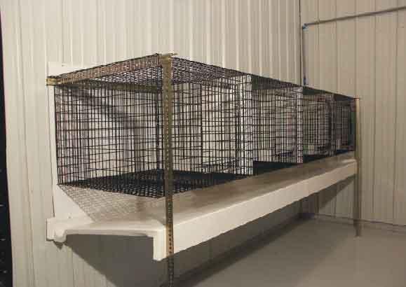 Hd animals rabbit cage design for Rabbit enclosure design