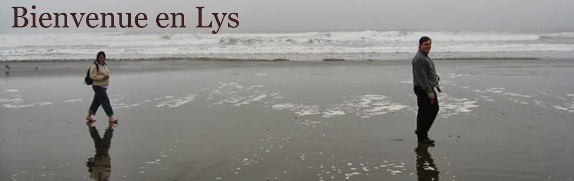 Bienvenue en Lys