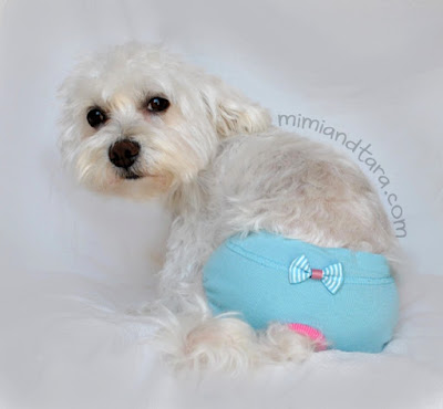 panties for dogs pattern