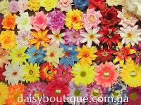 Daisy boutique жіночий інформаційний блог