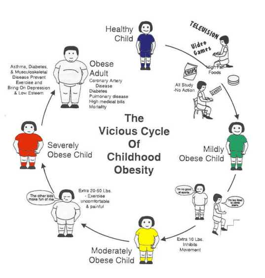 Obesity In Children Causes And Prevention Universal Science Compendium