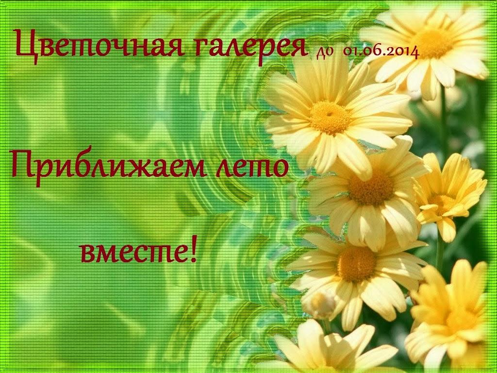 цветочные компазиции