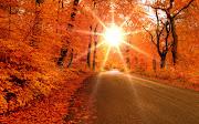 Bella carretera en otoño. Fondo de pantalla de una carretera en la hermosa . bella carretera en otoã±o