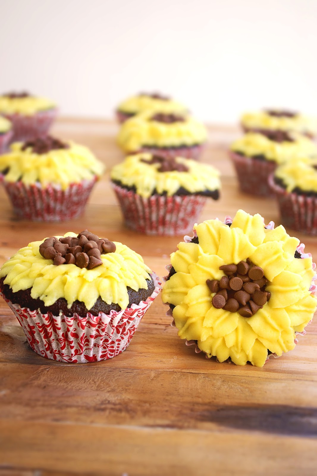 Chocolate cupcake recipe yummy
