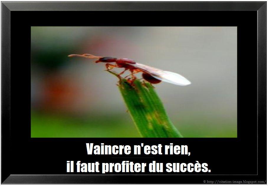 Citaten Succes : Drunkethic citations sur succès en image