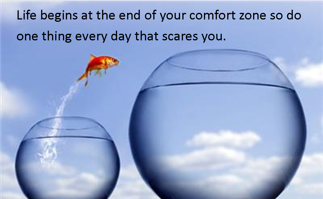 Outside Comfort Zone Quotes Quotesgram