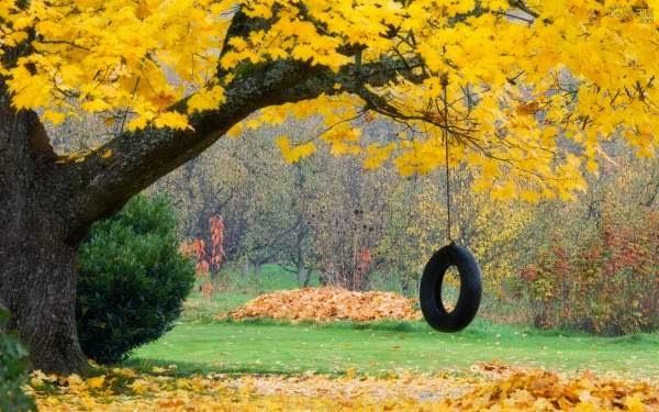 Outono com alegria...