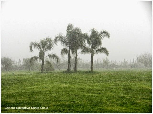 Lluvia torrencial - Chacra Educativa Santa Lucía