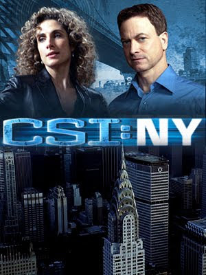 Assistir CSI New York 8ª Temporada Online Dublado Megavideo