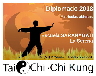 DIPLOMADO TAICHI - CHIKUNG 2018