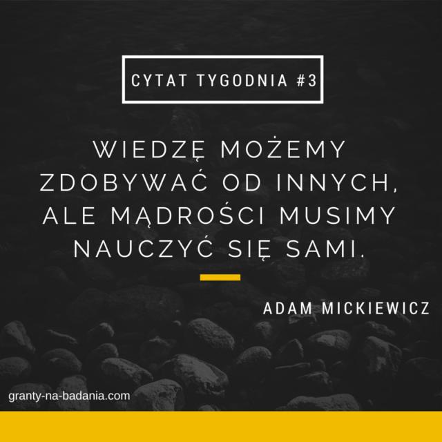Wiedzę możemy zdobywać od innych, ale mądrości musimy nauczyć się sami - Adami Mickiewicz