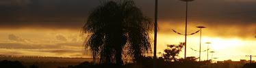 O sol nasce no Pantanal