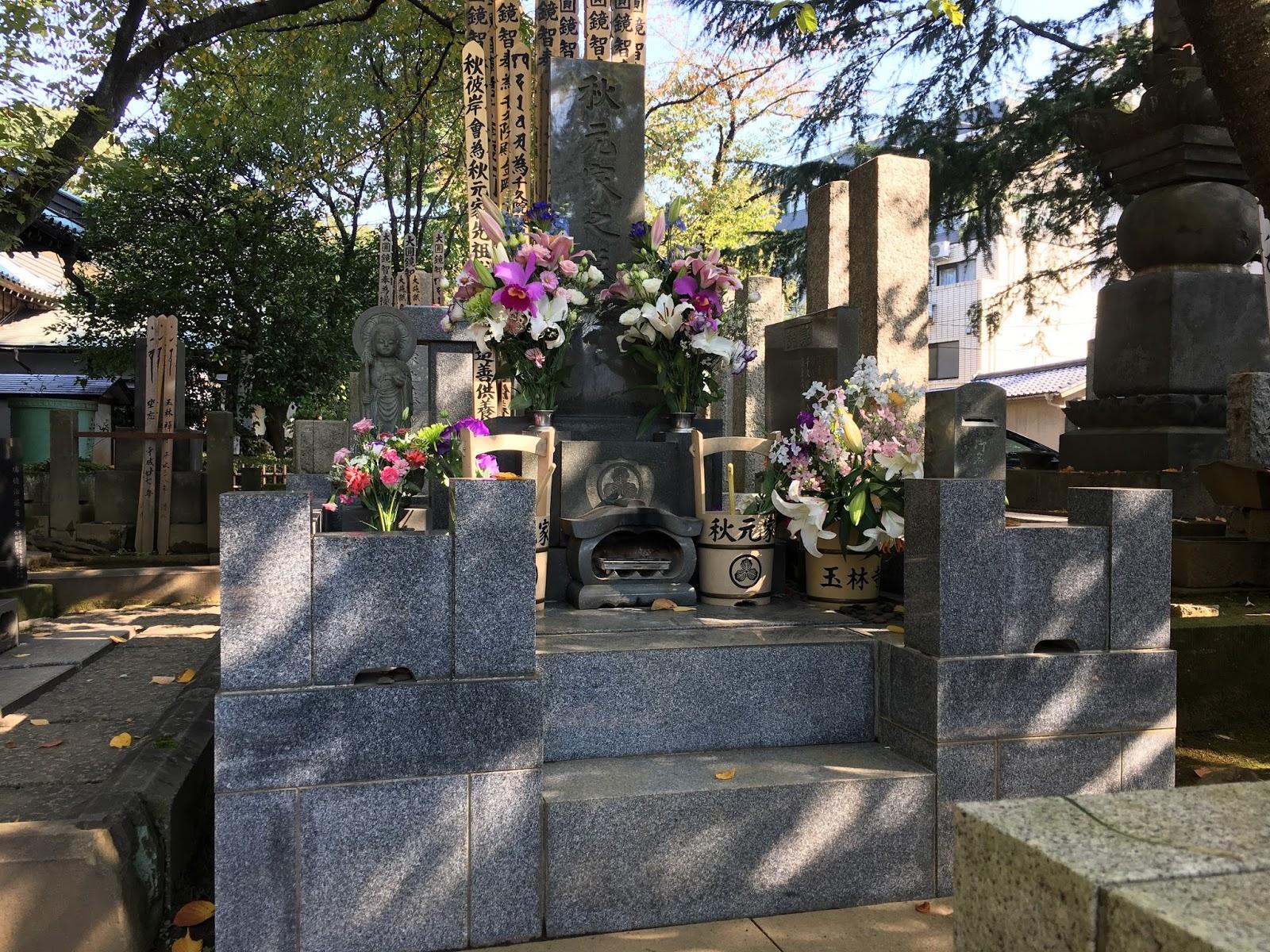 千代の富士貢の画像 p1_11