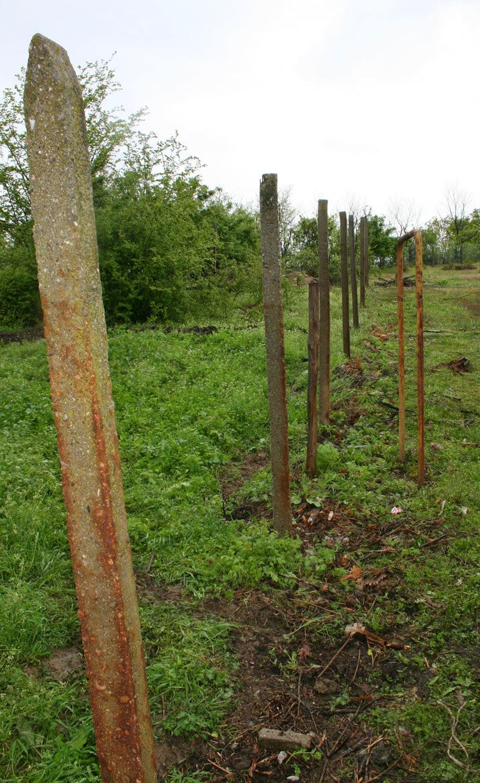 No more fence