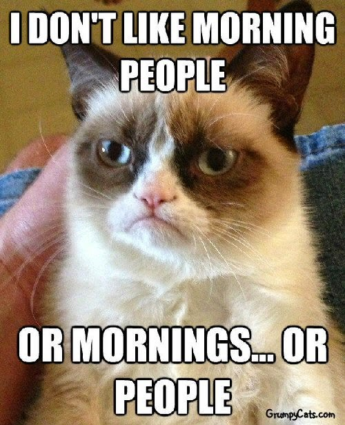 grumpy cat hates mornings and people funny image