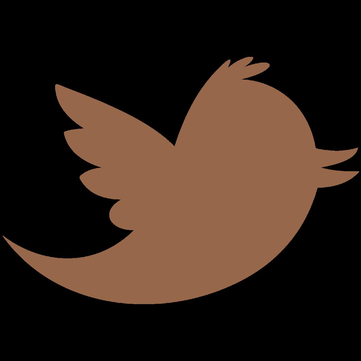 Segueix-nos a Twitter