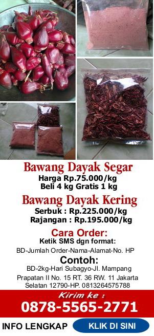 http://bawangdayak.net/