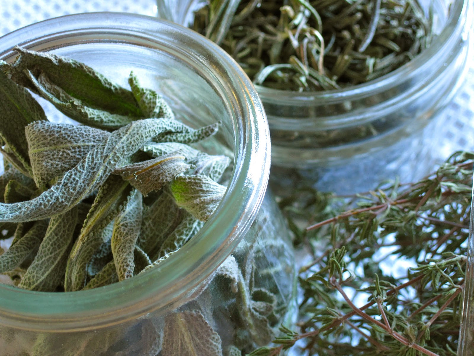 Drying herbs: two techniques | Yankee Kitchen Ninja