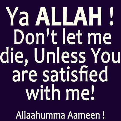 Ya Allah Ya Muhammad Wallpapers Ya allah don t let me die Ya Allah Ya Muhammad Ya Ali Wallpapers