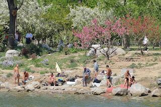Swimmers at Yuyuantan Park