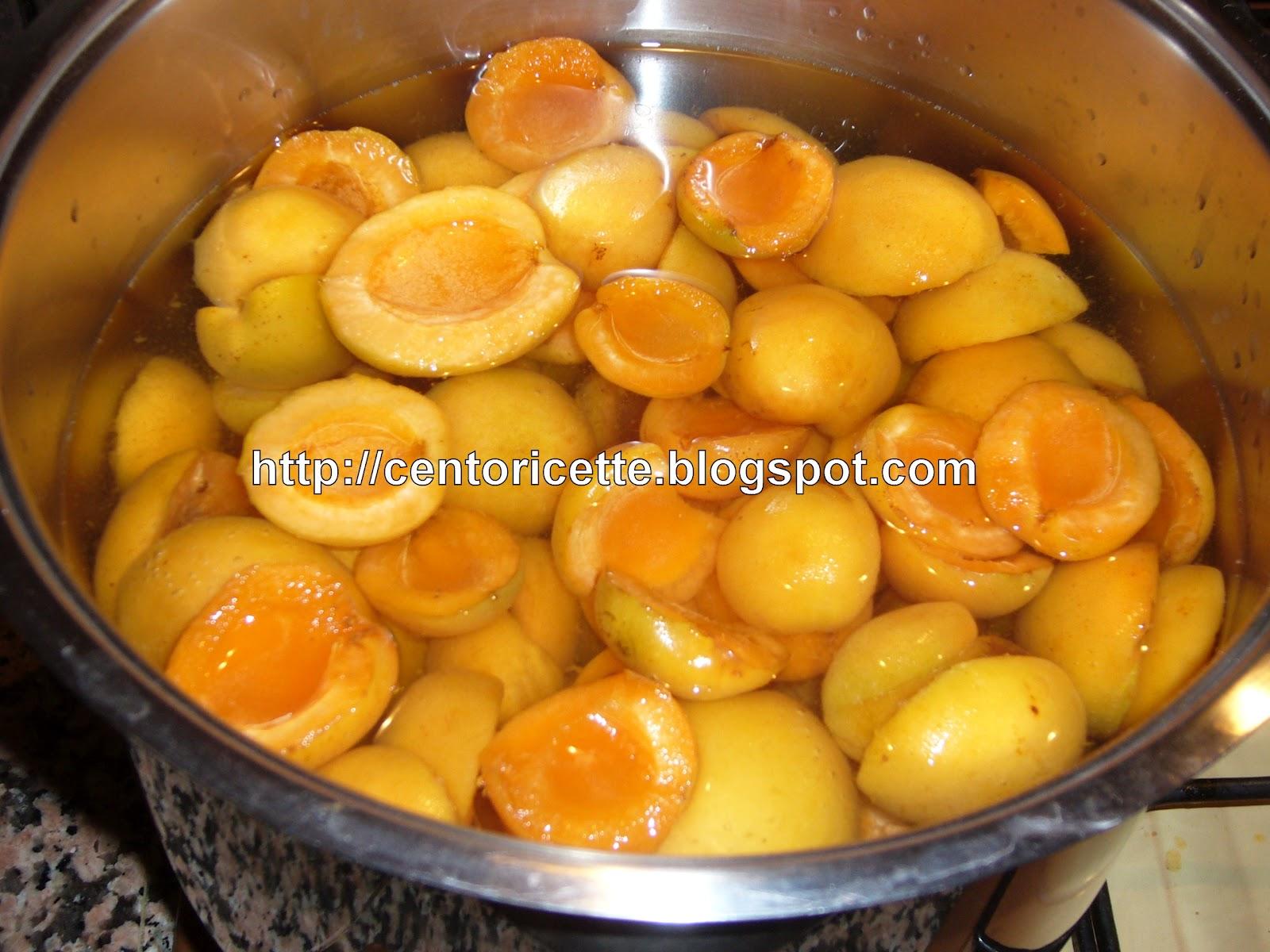 Cento ricette succo di frutta all 39 albicocca for Succhi di frutta fatti in casa